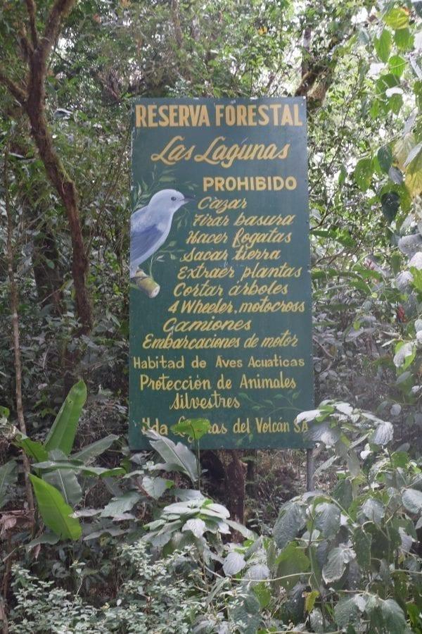 Visiter les plantations de café 3