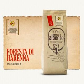 _0011s_0000_Alberto---Pack1